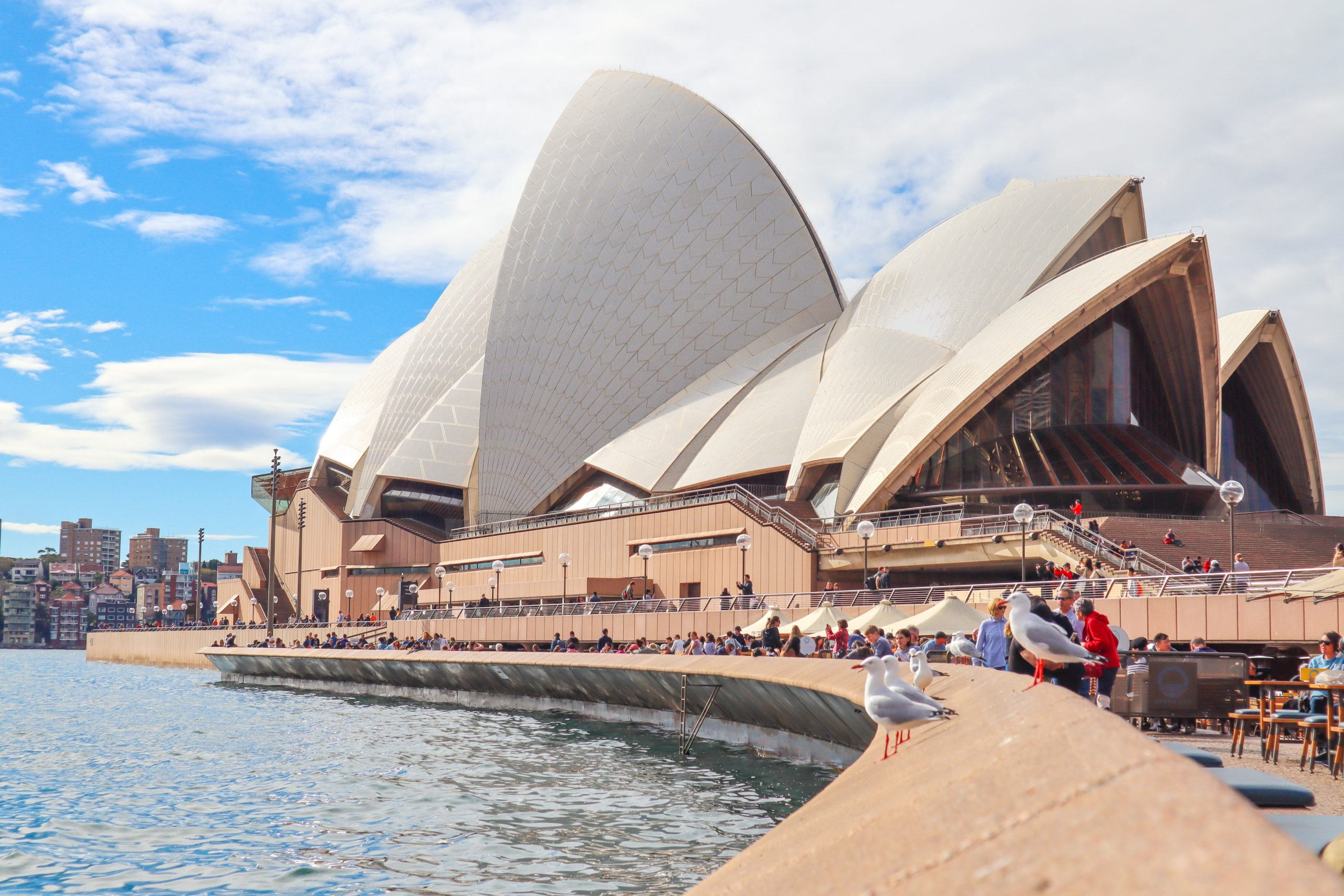 """16 stocks to watch the following Sydney's """"freedom Day"""""""